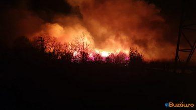 Photo of Incendiu de proporții! Ard dealurile în județul Buzău