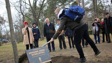 Photo of Buzăul a plantat pentru istorie!